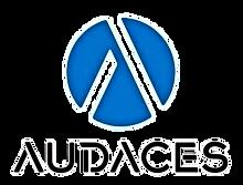 Audaces Distribitör Erya Yazılım