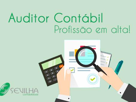Entenda como o auditor contábil vem se tornando um dos profissionais mais valorizados no mercado