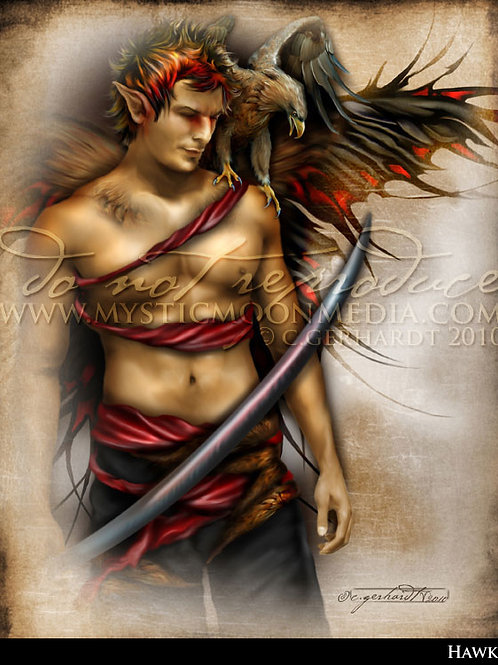 Hawk - The Warrior Fay Collection  - 2010