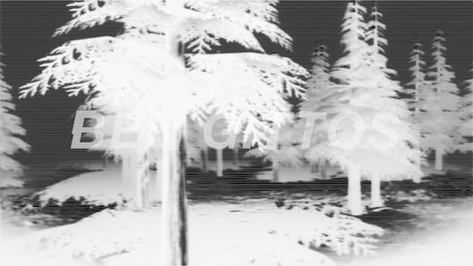 notch_forest_layer_negative_h264_4.mp4