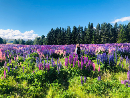 The Lupins!!!!