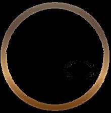 Logo SVP 2.png