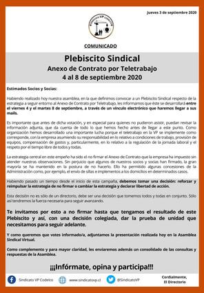 Participa en el Plebiscito Sindical entre el 4 y el 8 de septiembre