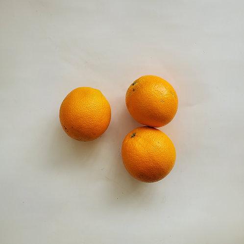 Citrus, Orange