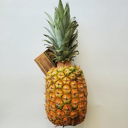 Pineapple, Golden