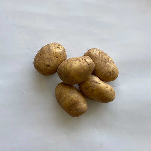 Potato, Baker / Russet - PEI