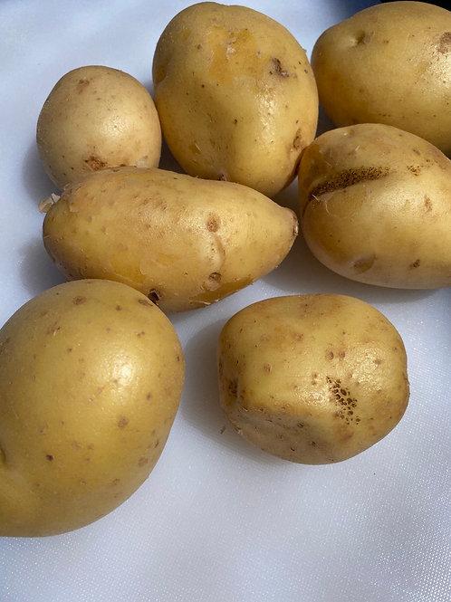 Yellow Potatoes - Organic