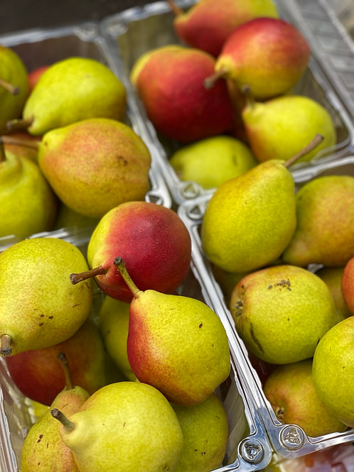 Pears, Clapp - Ontario