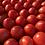 Thumbnail: Tomatoes, Roma