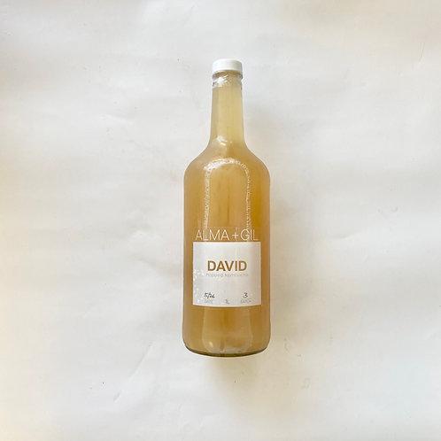 DAVID kombucha 1L