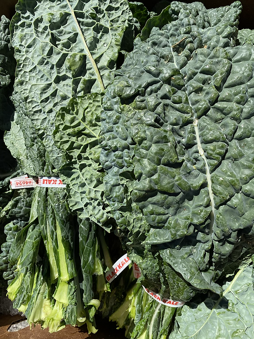 Kale, Black - Cavolo Nero - Ontario