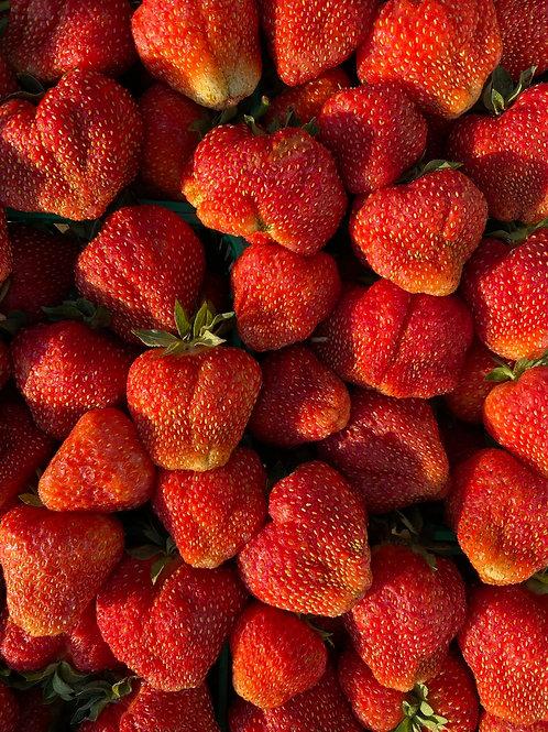 Berries, Strawberries - Ontario