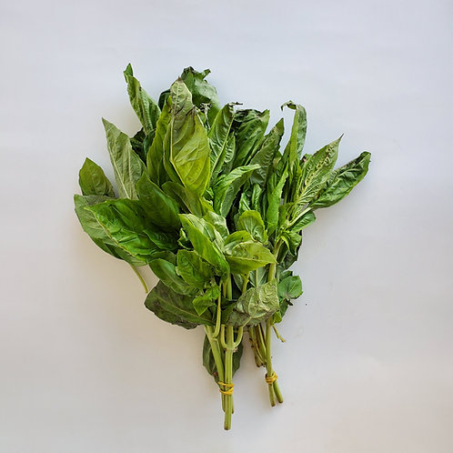 Herbs, Basil
