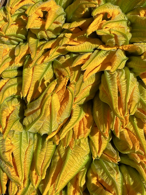 Zucchini Blossoms (Squash Blossoms)