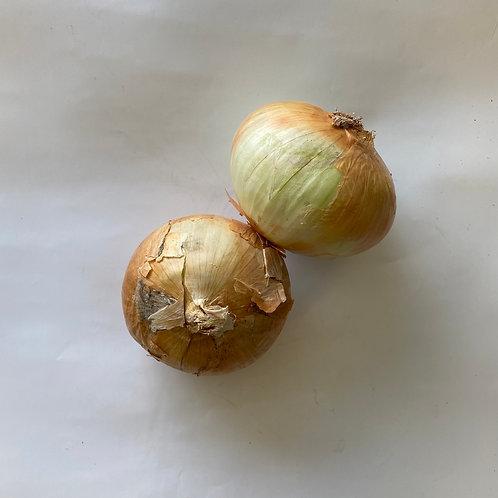 Onions - Organic