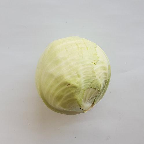 Cabbage, Green - Ontario