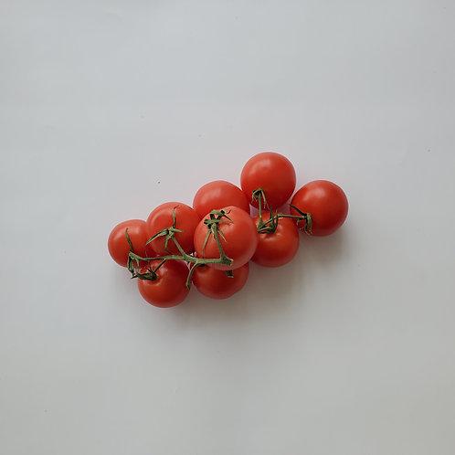 Tomatoes, Vine - Ontario