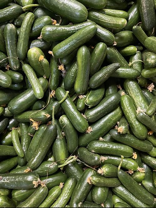 Cucumbers - Organic