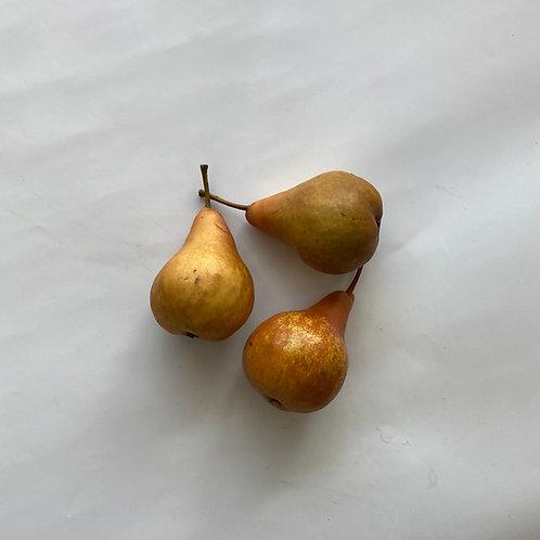 Pears, Bosc - Ontario
