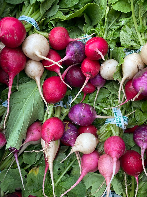 Root Vegetables, Radishes, Cello with leaves - Ontario