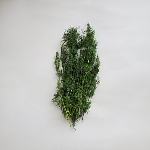 Herbs, Dill