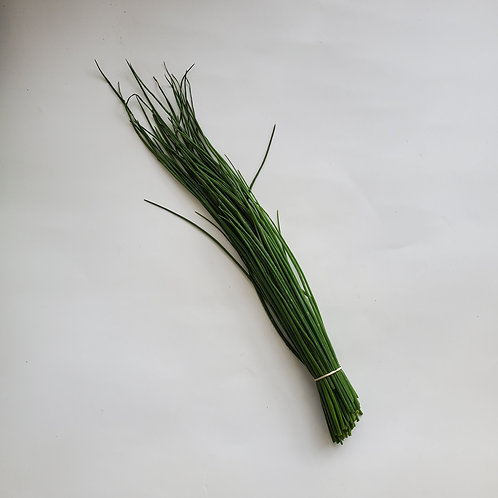 Herbs, Chives