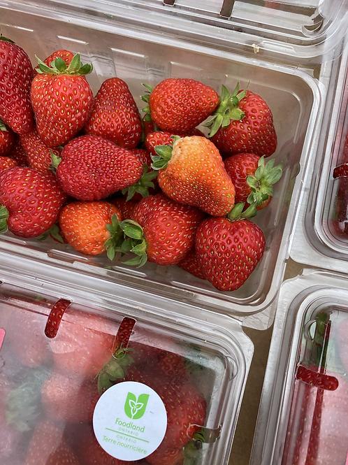 Berries, Strawberries