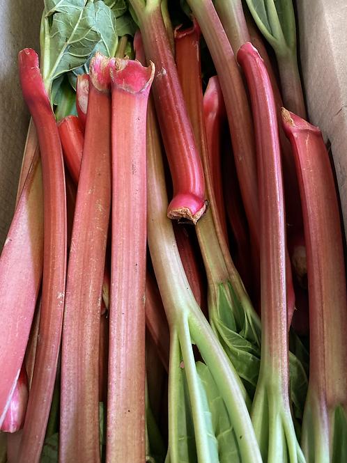 Rhubarb - Ontario