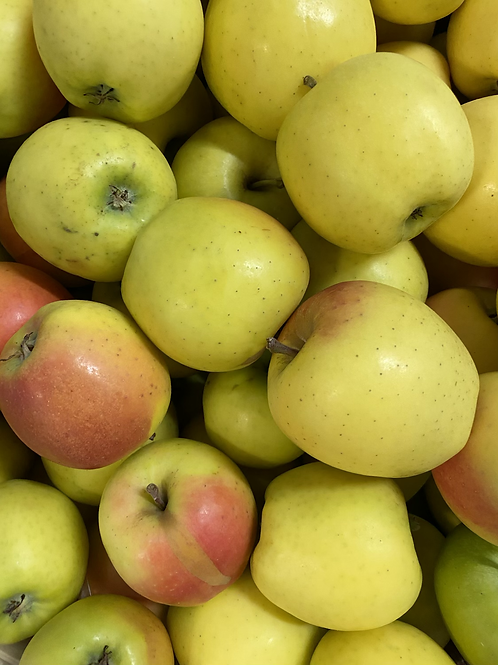Apples, Mutsu - Ontario