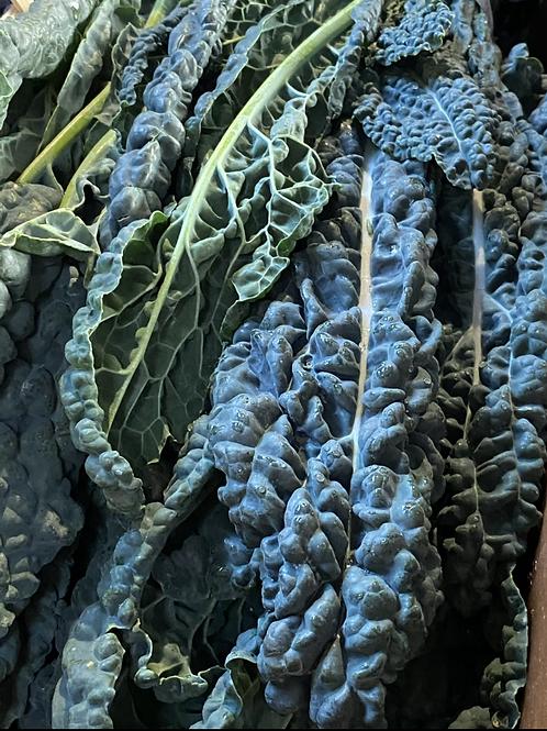 Kale, Black - Cavolo Nero