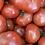 Thumbnail: Tomatoes, Hot House