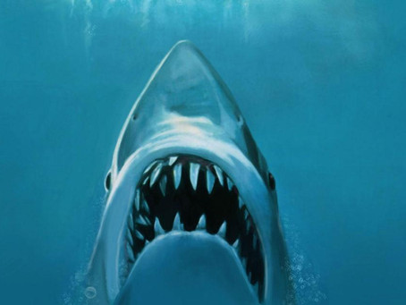 JAWS!!