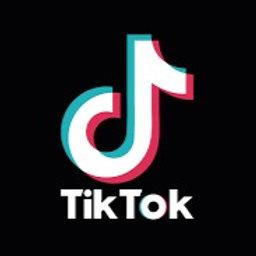Tik Tok Ad Credits