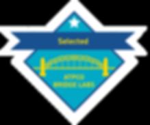 Bridgelabs Badges_Selected(1).png
