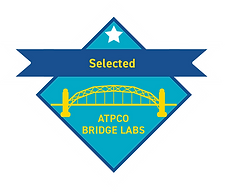 Bridgelabs Badges_Selected(1).png