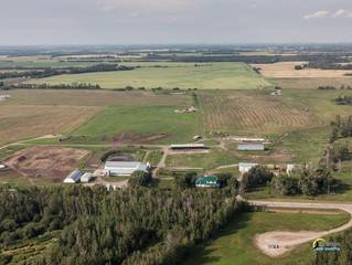 50 Cow Start-up Farm - Leduc County