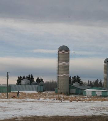 Old Dairy barns.JPG