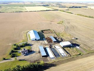 Red Deer Area Dairy Farm!