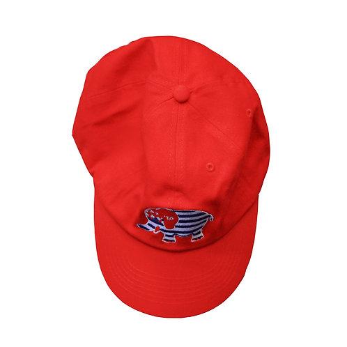 Republican Election Hat