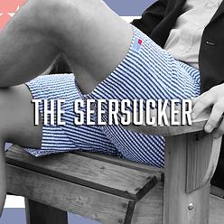 American Oxford Seersucker Shorts