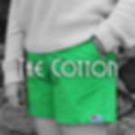 American Oxford Greek Fraternity Shorts