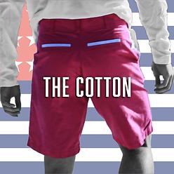 American Oxford Cotton Shorts