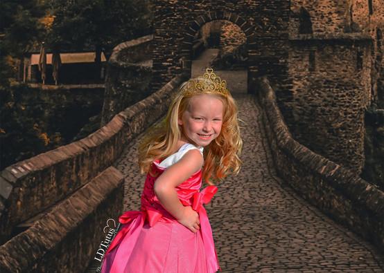 Aurora Castle 3.jpg
