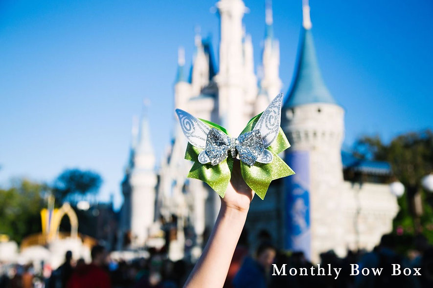 2 Bows | 3 Months | LDTutus Mystery Monthly Bow Box Subscription