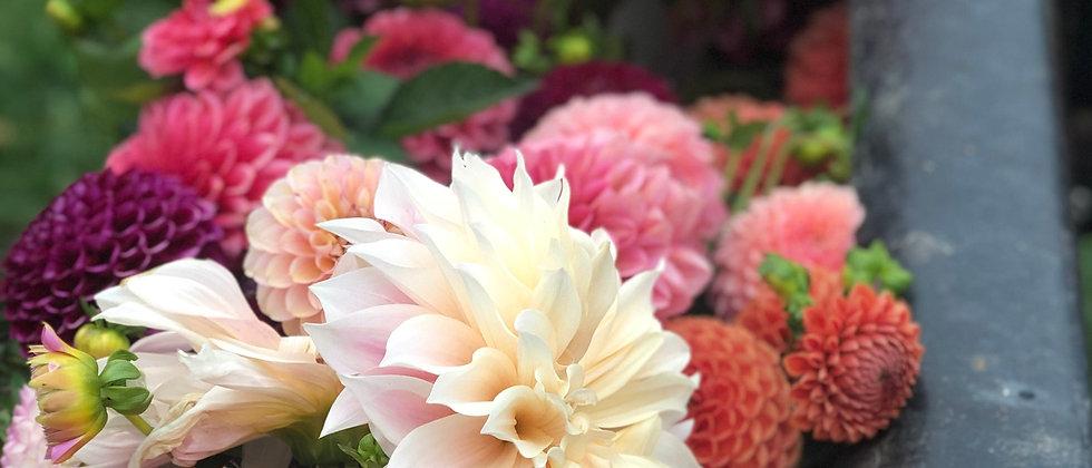 4 Week September Bouquet Subscription