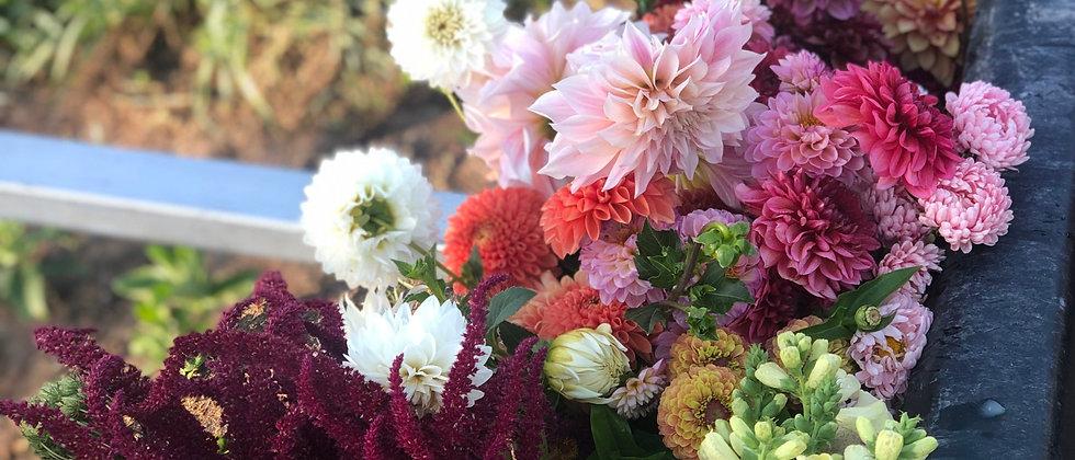 8 Week Bi Weekly - Bouquet Subscription