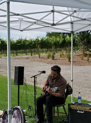 Johnny Boy at the winery.JPG .jpg