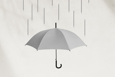 TDC_SS_Insurance_2020_WIX_Header.jpg
