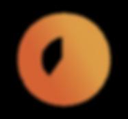 mykraut_rezepte_icon2.png