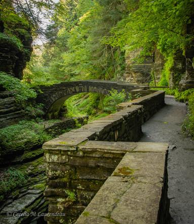 Robert Tremon Gorge Bridge
